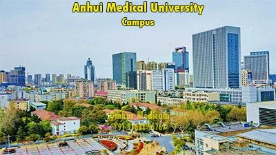anhui medical university campus